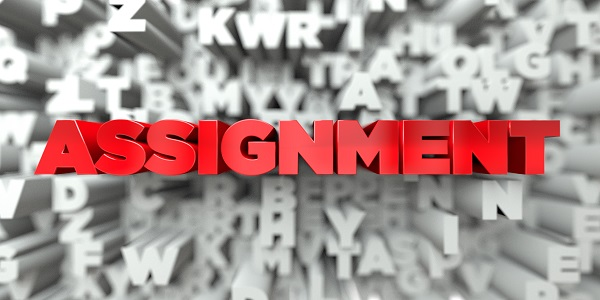 Who does assignements